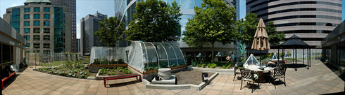 20090623_y-roof_pano-490